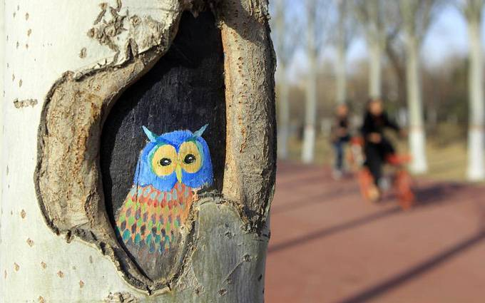 Desenhos em árvores atraem turistas em parque de Ningxia